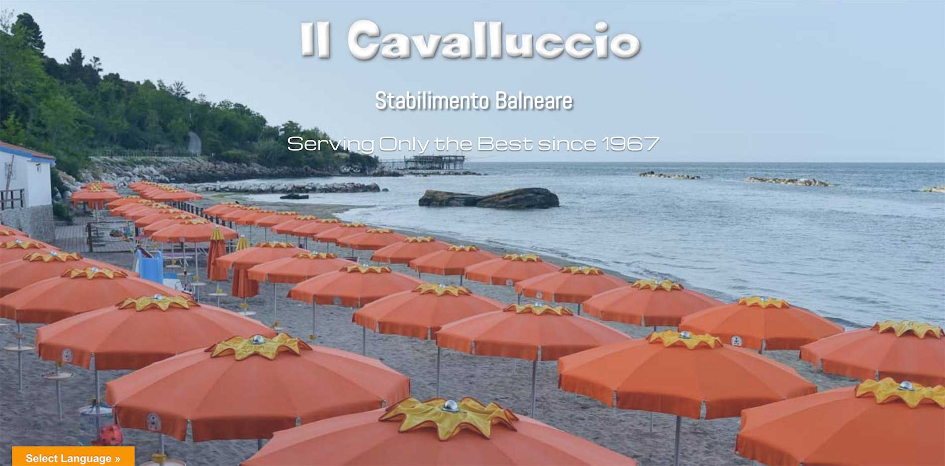 Cavalluccio1