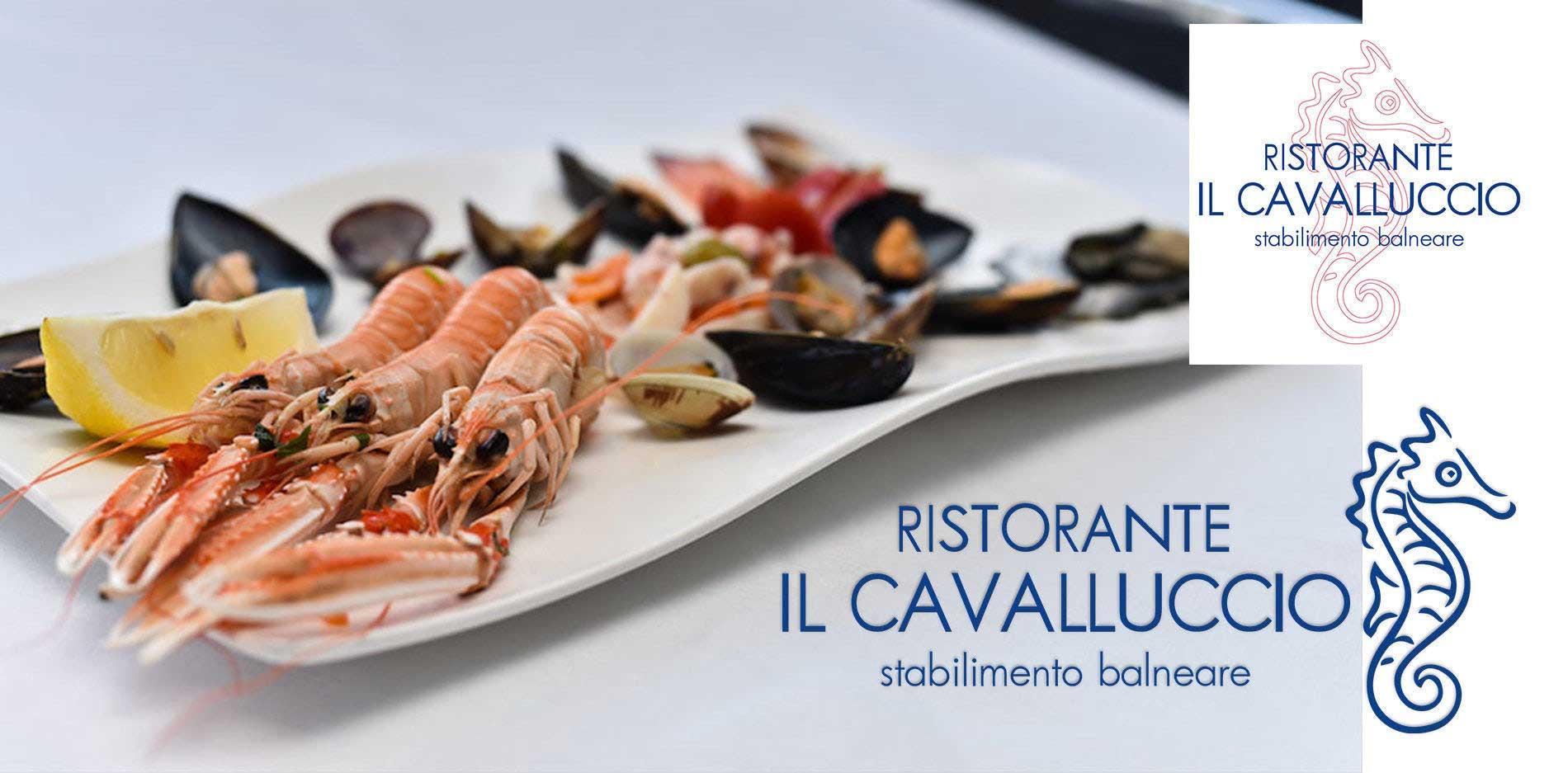 Cavalluccio5